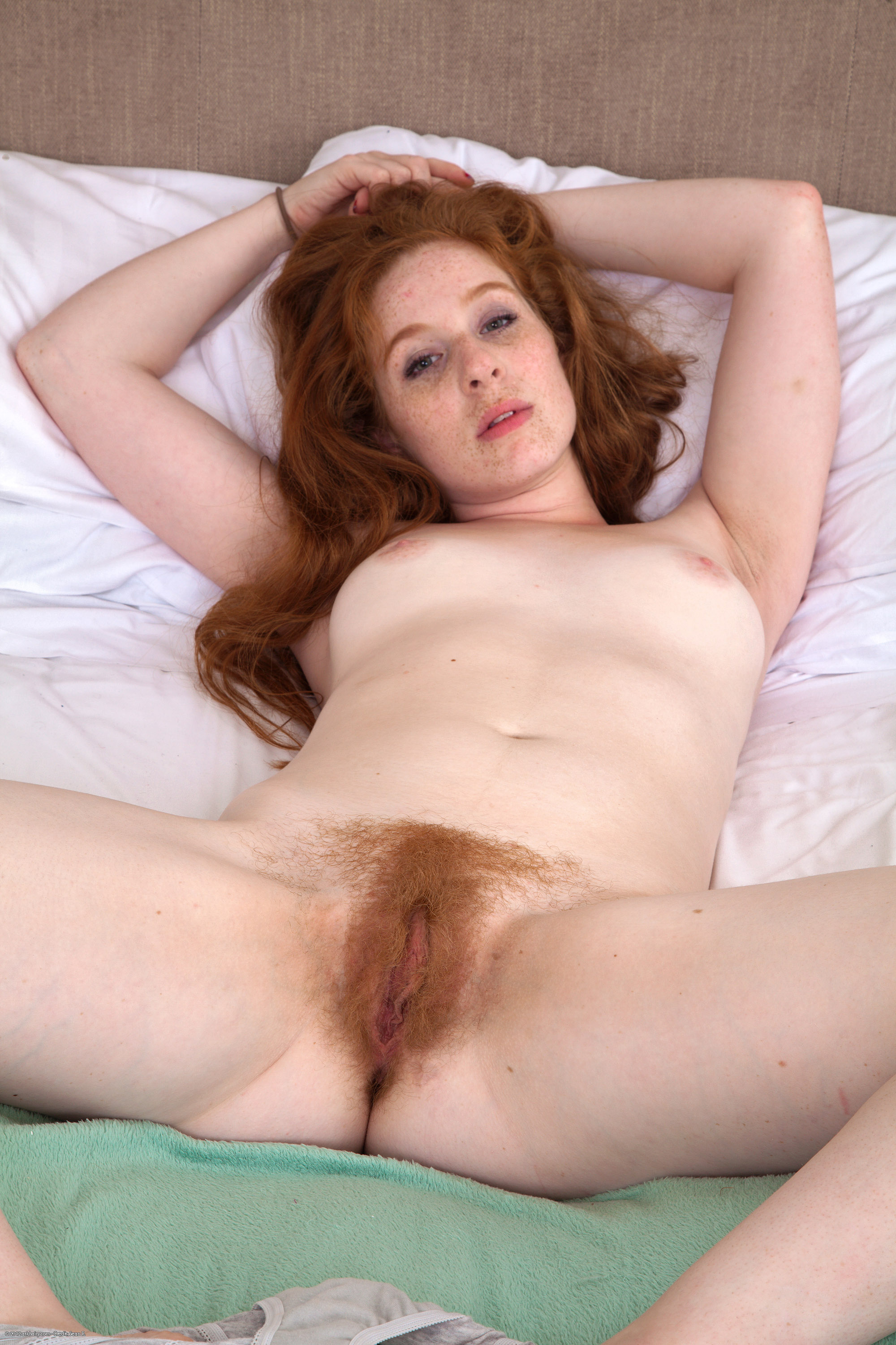 Daggy hairy pussy free movies nipples pictures gay