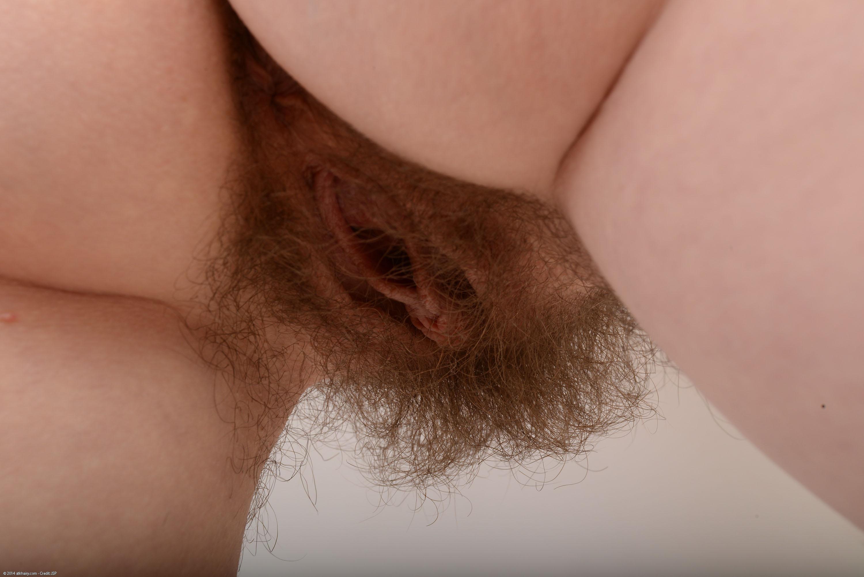 Крупный план ебли волосатой пизды